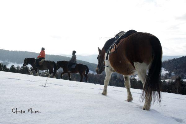 Wyprawy zimowe.